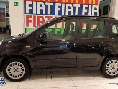 usata Fiat Panda New 1.2 Lounge 69 cv Euro 6 Aziendale !