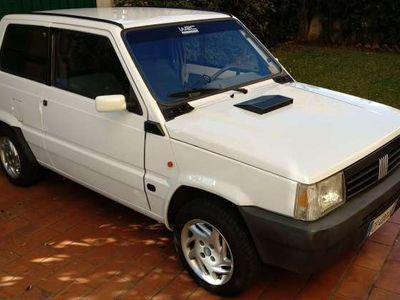 used Fiat Panda 1100 i.e. cat Young