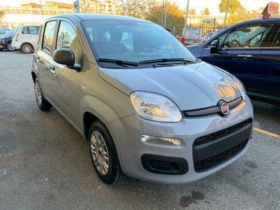 usata Fiat Panda 1.2 Easy S&S - KM0 - DIVERSI COLORI - OCCASIONE