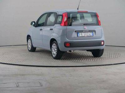 usata Fiat Panda 1.2 69 Cv Easy