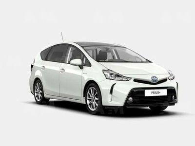 gebraucht Toyota Prius+ 1.8 Lounge nuova a San Lazzaro di Savena
