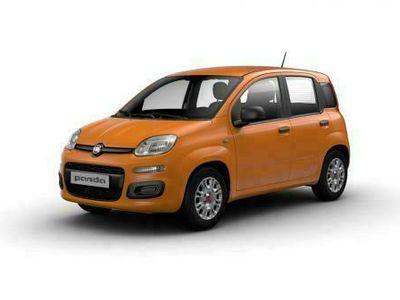 usata Fiat Panda 1.0 FireFly S&S Hybrid Easy