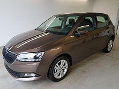 usata Skoda Fabia Facelift Ambition Wltp 1.0 Tsi 70kw / 95ps 1.0 ...