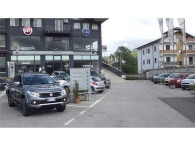 gebraucht Fiat Fullback 2.4 180CV Doppia Cabina LX nuova a Potenza