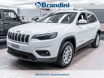 usata Jeep Cherokee N. My19 Business 2.2 Multijet 195cv 9at Awd
