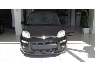 usata Fiat Panda NewNuovo Diesel Potenza