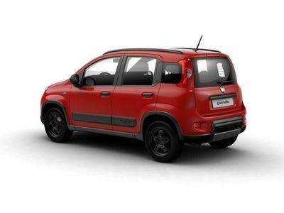 usata Fiat Panda 4x4 0.9 t.air t. Wild s&s 85cv 5p.ti