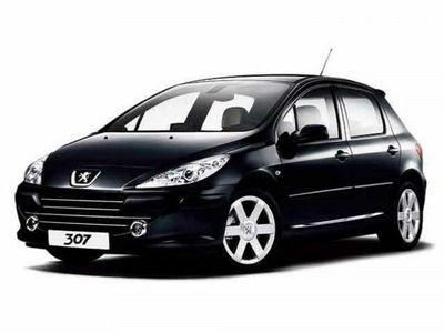 usata Peugeot 307 1.4 16V 5p. Open