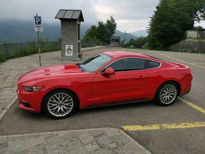 usata Ford Mustang ITALIANA 2.3 EcoBoost