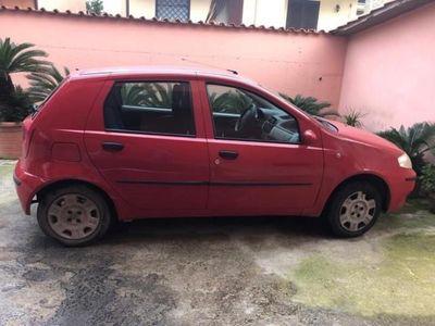 usata Fiat Punto 1.2 5 porte Actual