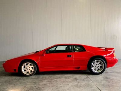 usata Lotus Esprit 2.2i turbo cat SE 12.200 km originali