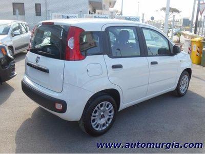 usata Fiat Panda 1.2 69cv Easy KM0