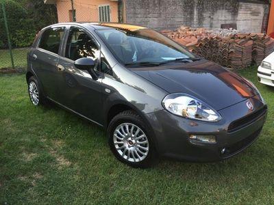 usata Fiat Punto 1.2 8v 5 porte clima confort km 0