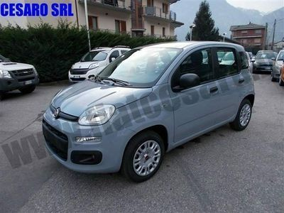 usata Fiat Panda New1.2 69cv EASY Euro 6d-Temp