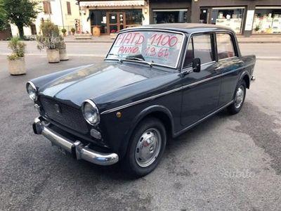 usado Fiat 1100D asi