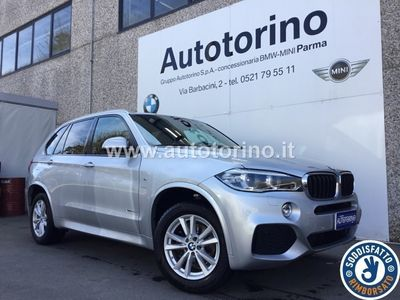 usata BMW X5 X5xdrive25d Business 218cv auto