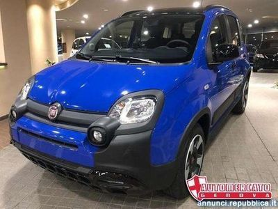usata Fiat Panda Cross 1.2 City Connected by Wind KM0 IN PROMOZION