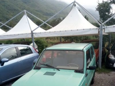 used Fiat 1100 i.e. cat Young