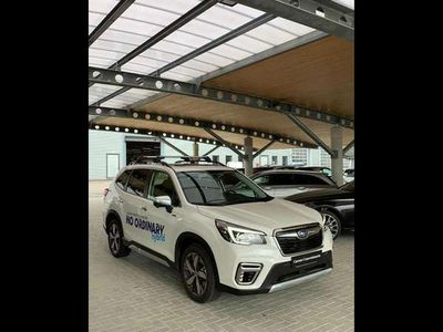 usata Subaru Forester Forestere-Boxer Premium (3 tagliandi OMAGGIO)