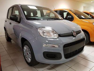 usata Fiat Panda 1.2 69cv Easy - Euro 6 KMO