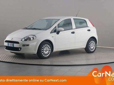 usata Fiat Punto 1.4 Easypower Street 77cv Euro 6 GPL