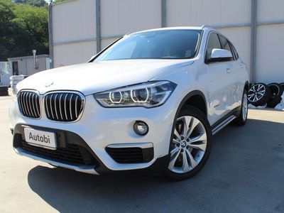 brugt BMW X1 xDrive25d X Line