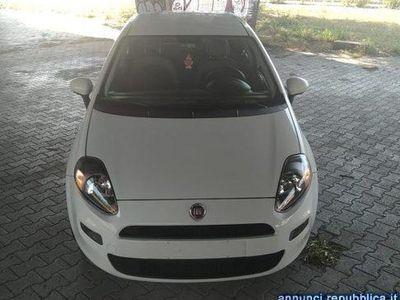 usata Fiat Punto 1.3 Mjt 85 CV Dynamic plus Roma