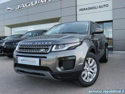 usado Land Rover Range Rover 2.0 TD4 150 CV 5p. Pure Monteriggioni