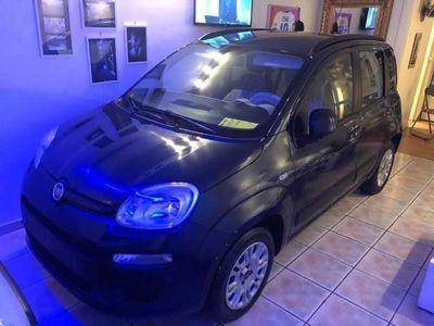 usata Fiat Panda 1.3 MJT 95 CV S/COME NUOVA/EURO6/G12M