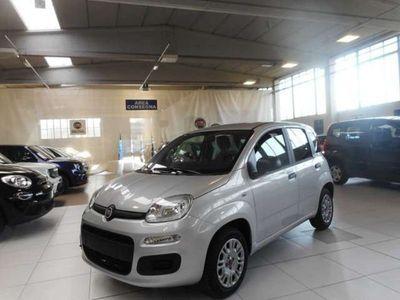 usata Fiat Panda New 1.2 69cv Easy+Pack Flex Km0
