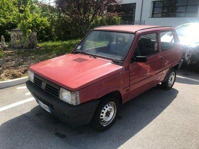 usata Fiat Panda 1100 i.e. cat College