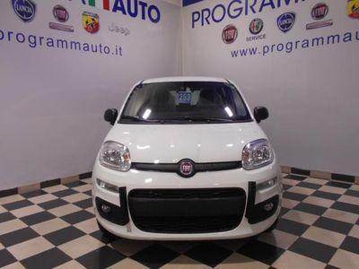 usata Fiat Panda New1.2 Easy NUOVO MODELLO