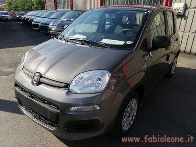usata Fiat Panda 1.2 Easy nuovo