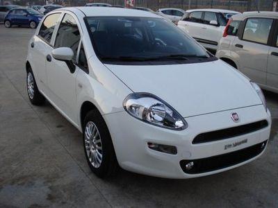 usata Fiat Punto 1.2 8V 5 porte Street rif. 7214299