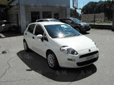 usata Fiat Punto VAN 1.3 Mjet 95cv Easy 4 posti 5 porte N1 Euro 6