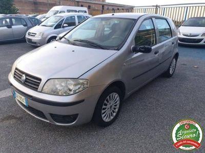 usata Fiat Punto 1.3 Multijet 16V 5 porte Dynamic Diesel