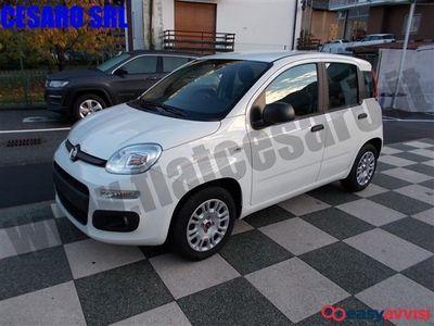 usata Fiat Panda 1.2 easy benzina