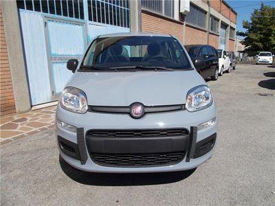 usata Fiat Panda 1.2 Easy EURO 6 KM. ZERO MASSARI 338.7575187