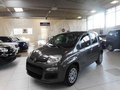 usata Fiat Panda New1.2 69cv Easy+Pack Flex Km0