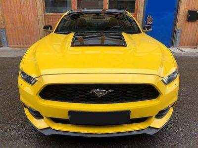 usata Ford Mustang 3.7 v6 309cv pelle manuale gialla/nera benzina