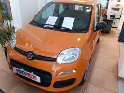 usata Fiat Panda PandaBenzina/GPL
