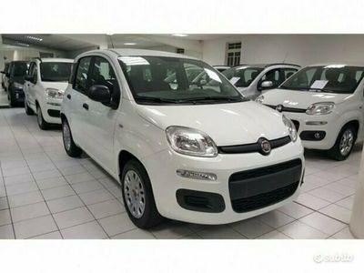 usata Fiat Panda 1.2 69cv POP KM 0 - 2020