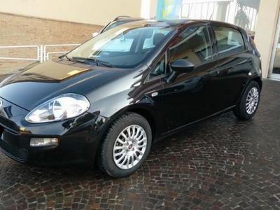 usata Fiat Punto 1.3 MJT II 75 CV 5 porte Street rif. 7270576