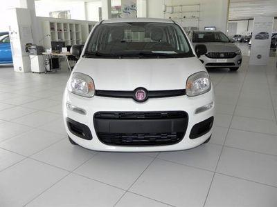 usata Fiat Panda New1.2 69CV POP CLIMA rif. 7162952
