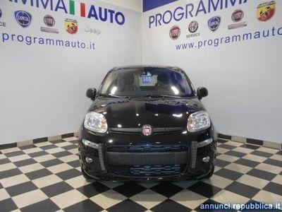 usata Fiat Panda 1.2 EasyPower Easy Piacenza