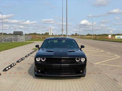 usata Dodge Challenger 3.9 V6 AT8 SXT Blacktop