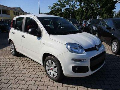 usata Fiat Panda Cross 1.2 City - 5 posti - Clima Auto - Ok Neopat.