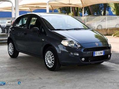 usata Fiat Punto 1.2 Street 5p E6 rif. 7449579