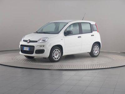 usata Fiat Panda 1.2 69 Cv Easypower E6d-Temp Easy