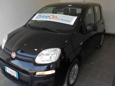 usata Fiat Panda 1.2 69cv E6d-Temp Easy